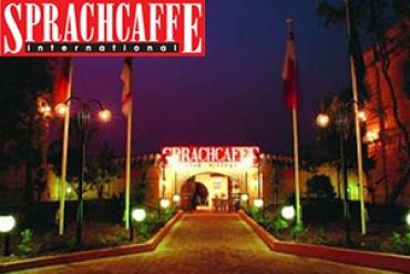 Sprachcaffe для взрослых