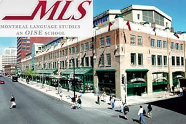Montreal Language Studies