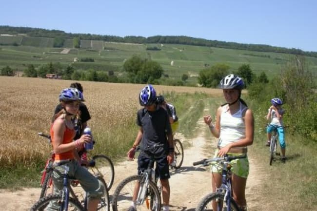 Французский язык и спортивные мероприятия в летнем лагере C.I.L.S. во Франции