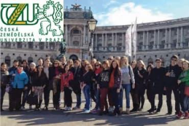 одготовительные курсы английского и чешского языка