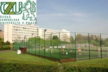 Годовая Футбольная Академия
