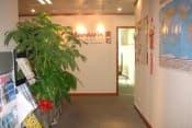 Летние каникулы в Китае в Пекине и Шанхае с изучением китайского языка для школьников и студентов от 15 до 19 лет фото