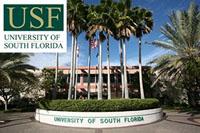 Отзыв про University of South Florida от Ульяны Третьяковой, 18 лет