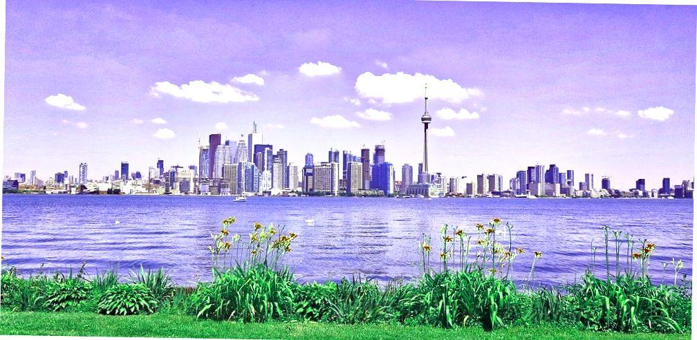Торонто город.